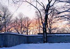 Por do sol de novembro no parque da cidade Fotografia de Stock