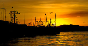 Por do sol de Puntarenas Imagens de Stock Royalty Free