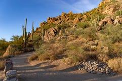 Por do sol de Sonoran do pico do pináculo fotografia de stock