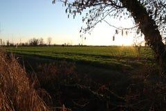 Por do sol de Tipica no lado do país imagem de stock royalty free