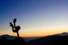Por do sol Desertscape Imagens de Stock Royalty Free