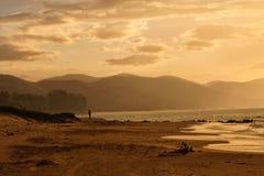 Por do sol do açafrão Imagem de Stock