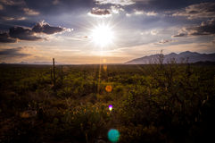 Por do sol do Arizona Fotos de Stock