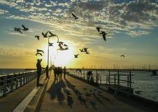 Por do sol do cais do kilda do St de Austrália Melbourne fotografia de stock