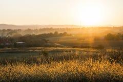Por do sol do campo Imagem de Stock