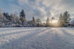 Por do sol do campo de neve fotografia de stock
