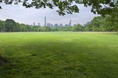 Por do sol do Central Park em New York City Fotos de Stock Royalty Free