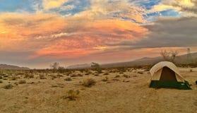 Por do sol do deserto fotos de stock