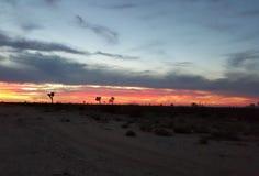 Por do sol do deserto com nuvens Foto de Stock