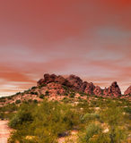 Por do sol do deserto do Sonora Foto de Stock
