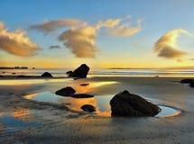 Por do sol do litoral, Nova Zelândia fotografia de stock royalty free