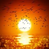 Por do sol do oceano da ilustração Fotografia de Stock