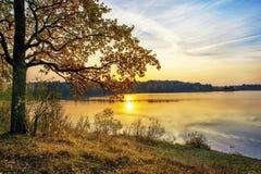 Por do sol do outono no lago fotografia de stock