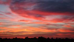 Por do sol do outono sobre a árvore-linha Imagem de Stock Royalty Free