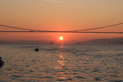 Por do sol do pássaro de Turkay Istambul bosporus Imagem de Stock Royalty Free