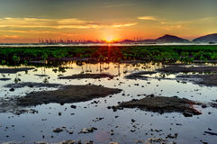 Por do sol do pantanal Fotos de Stock