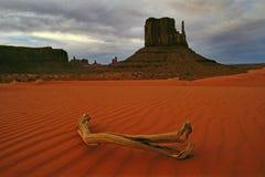 Por do sol do vale do monumento Imagem de Stock