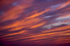 Por do sol do verão com textura colorida das nuvens Imagens de Stock Royalty Free