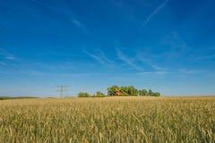 Por do sol do verão no campo e no moinho de vento dourados, natureza lindo, Ger Imagem de Stock Royalty Free