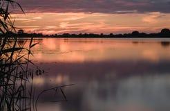 por do sol do verão no lago após a chuva Fotos de Stock