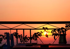 Por do sol do vinho Imagem de Stock Royalty Free