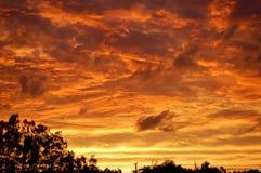 Por do sol dourado Fotografia de Stock