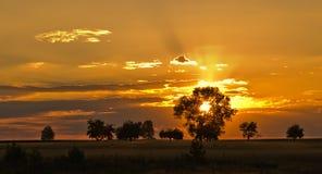Por do sol dourado Imagens de Stock
