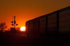 Por do sol dourado atrás do trem de partida Fotos de Stock