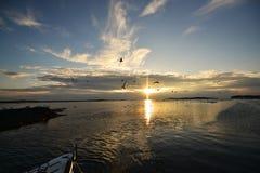 Por do sol dourado do mar foto de stock