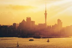 Por do sol dourado na cidade de Auckland, Nova Zelândia fotos de stock royalty free