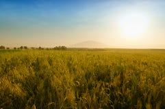 Por do sol dourado na montagem Tabor Imagens de Stock Royalty Free