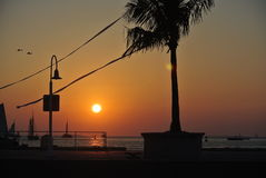 Por do sol dourado sobre o mar Foto de Stock