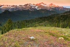 Por do sol e montanhas Fotos de Stock