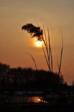 Por do sol e ponto Foto de Stock Royalty Free