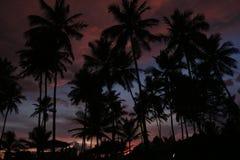 Por do sol e praia da noite Imagem de Stock
