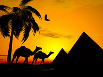 Por do sol Egipto do deserto Imagens de Stock