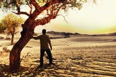 Por do sol em Badan Jaran Desert Imagens de Stock Royalty Free