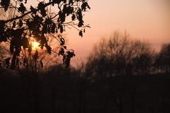 Por do sol em Collsacabra Imagens de Stock