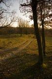 Por do sol em Collsacabra Imagem de Stock Royalty Free