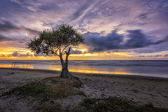 Por do sol em Dalit Beach Imagens de Stock