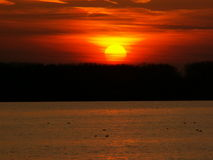 Por do sol em Danúbio Fotografia de Stock Royalty Free
