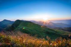 Por do sol em Doi Pha Tang Imagem de Stock