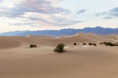 Por do sol em dunas de areia lisas do Mesquite no parque nacional de Vale da Morte, Califórnia, EUA Foto de Stock
