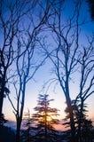 Por do sol em Himachal foto de stock