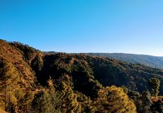Por do sol em Indian Hills norte, pinheiros fotos de stock royalty free