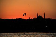Por do sol em Istambul Fotografia de Stock