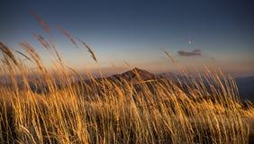 Por do sol em montanhas de Bieszczady, Polônia Fotografia de Stock