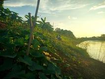 Por do sol em Nan River em Nan, Tailândia Fotos de Stock