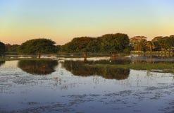 Por do sol em Pantanal Fotografia de Stock