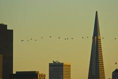 Por do sol em San Francisco, CA Imagens de Stock